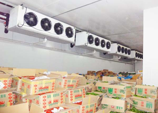 埃塞俄比亚FAN电厂服务交付程序的总结与分析_no.1074