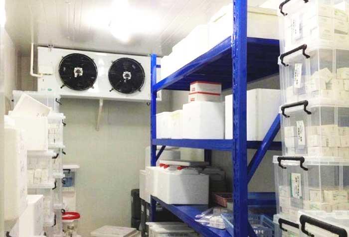 600 MW以上机组凝结水处理系统运行优化技术的应用分析_no.1213