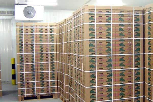 自励磁系统在300 MW汽轮机中的应用与分析_no.1420
